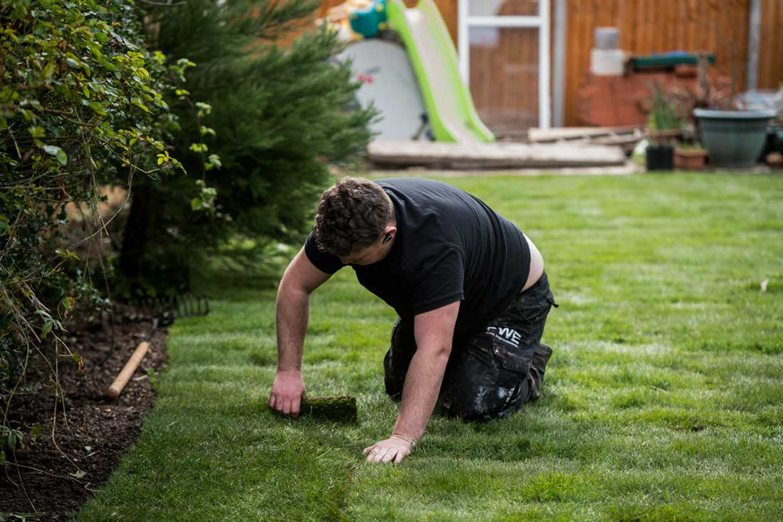 Top 4 Important Landscaping Tips For The Beginners